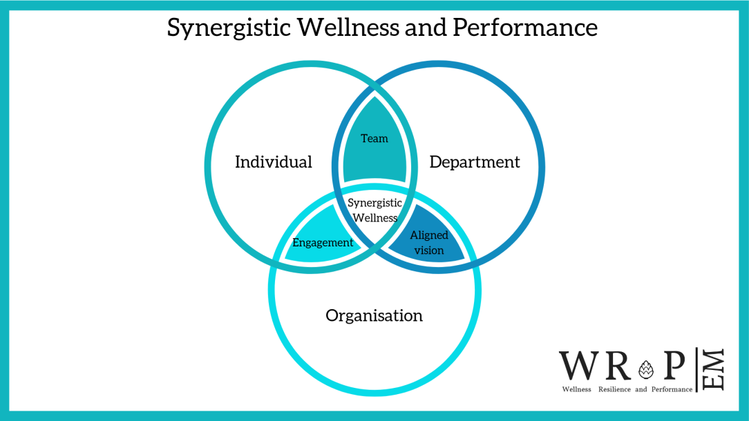 Re-defining Wellness and Performance-2